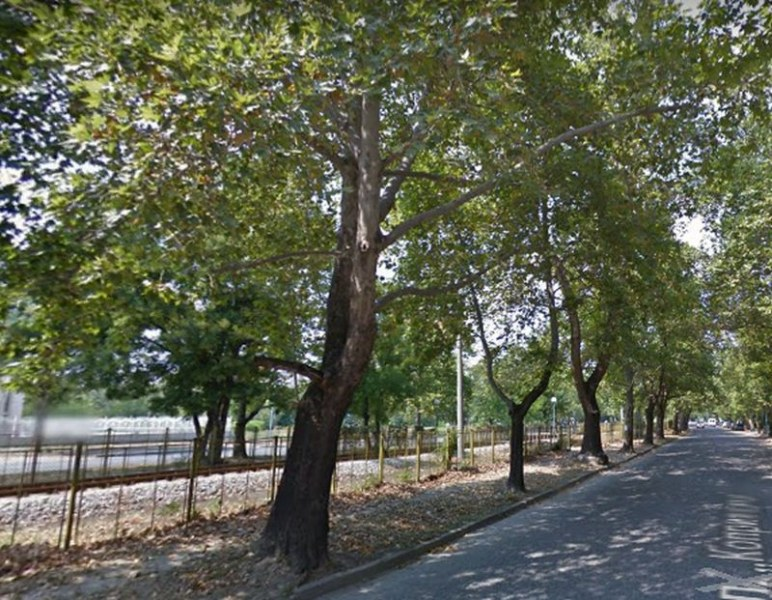 Uchastk Ot Golyam Bulevard V Plovdiv Stava Ednoposochen Snimki